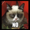 sophronia_chaos: Grumpy Cat looking pissed (no, grumpy cat, annoyed)