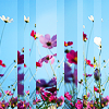 25lively: stock image of various flowers (stock: flowers)