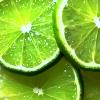 citruslover: (lime)