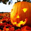 spicychilies: (Pumpkin)