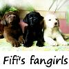 clea2011: (pup fangirls)