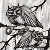 the_owls1: (owl)