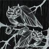 the_owls1: (owl1)