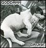 clappamungus: (Goddamn drunk)