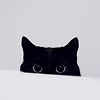 empty_marrow: (Black Cat)