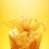digitaldesigner: (Stock • Yellow Gift)