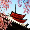 applespice: it is kiyomizu-dera ([places] kyoto)