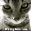 kittenofdoom: (My Turn)