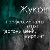 sibirian_cat: (догони меня керпидж)