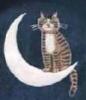 shr_cat: (moon_cat)