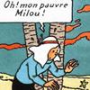 lamora: Courage, Milou! (pauvre milou! : tintin)