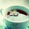 ulkopuolinen: (tea)