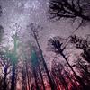 ulkopuolinen: (stars)