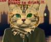 blogrev: (кот)