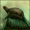 cereta: worn statue of a turtle from the Dark Tower series (turtle street)