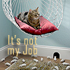 foolartist: (not my job cat)