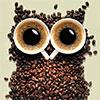 eredraen: (coffeowl)