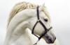 lavi_na: (лошадь)