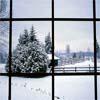 slashbycaranfin: (winter)