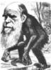 alleukemist: (Darwin)