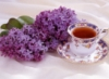 syringa_v: (lilac-and-tea)