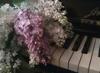 syringa_v: (клавиши)