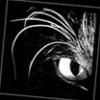 nomad_rat: (Default)