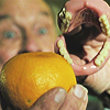 wishfulclicking: orange with hand with teeth (gen: creepy orangemouth)