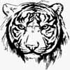 eugen_aka_tiger: (Default)