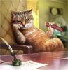 dragon_elva: (cat)
