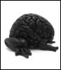 molotovo: (brain)
