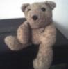 aloysius_bear: (casual)