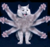 a_i_v_a_r: (кот)