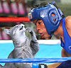 boxing_cat: (зигфрид и рой)