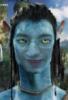 zhuk_zhuzhuk: (Avatar)