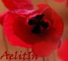 aelitin: (Лето)
