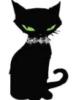 siamka2010: (черная кошка)