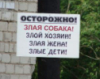brueggen: (pic#злые)