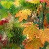 v2v: (листья-дождь)