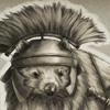 carmarthen: a wombat in a centurion's helmet (centurion wombat)