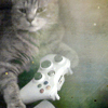 ext_47022: My cat with an xbox controller  (Gandalf // Pippin)