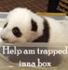amanuensis1: (Panda inna box (copperbadge))