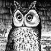 owlka: сова (pic#5496523)