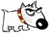 susita: (Очень злая собака)