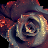 jouez_moi: (|006| bw rose w. red glitter)