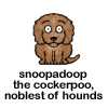 theorclair: (snoopadoop)
