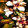 kelzadiddle: (Louis Comfort Tiffany 2 White Flowers)