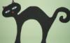 kleowa: (black cat)