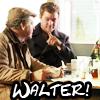 tree_pixie: (walter and peter)