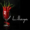 lillaya: (pic#5530461)
